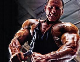 Спортивное питание для эндоморфа: как добиться идеального тела?