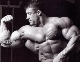 Спортивное питание для набора мышечной массы: особенности выбора