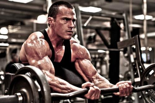 Базовые упражнения что это такое и как их правильно делать