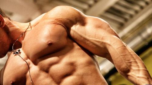 Лучшие упражнения для мышц рук для тренировки бицепса и трицепса в зале