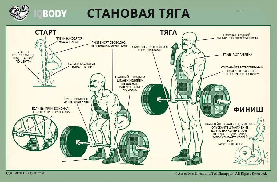 Становые упражнения