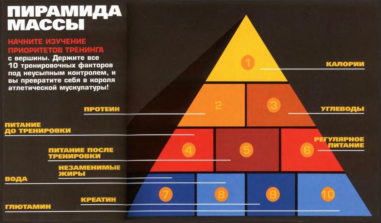 пирамида питания для набора мышечной массы
